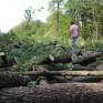 """Rektör Coşkun: """"İhtiyacımız vardı yüzlerce ağaç kestik ama yine de en çevreci biziz"""""""