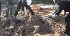 Deyrizor'da 230 kişinin cesedi bulundu