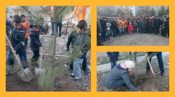 Mamak'ta 7'den 70'e park direnişi: İnşaat alanına ağaç diktiler